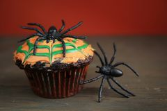 Spider cupcake Royalty Free Stock Images