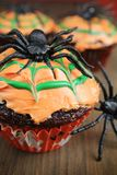 Spider cupcake Stock Photography