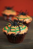 Spider cupcake Stock Photos
