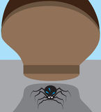 Spider in Danger Stock Photography