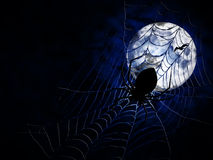 Spider on dark background. Spiderweb and big spider on dark background Stock Image