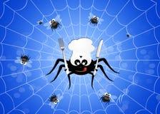 Spider eat flies Stock Image