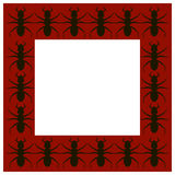 Spider frame Stock Photos