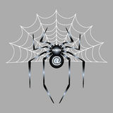 Spider gray. Spider for web and site Stock Photo