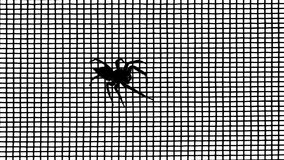 Spider on the grid against a light Royalty Free Stock Photos