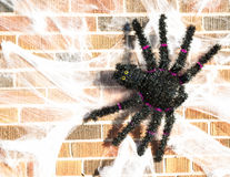 Spider Halloween Decoration Royalty Free Stock Photos