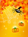 Spider of Halloween Royalty Free Stock Photos