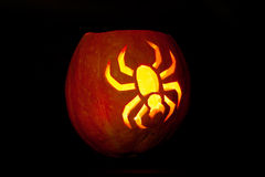 Spider Halloween pumpkin Stock Photos