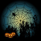 Spider and Halloween pumpkins Stock Photography