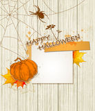 Spider_halloween1 Royalty Free Stock Photos