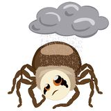 The spider Hauk and rain Royalty Free Stock Photography