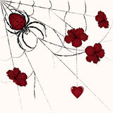 Spider and heart. Vector floral valentine illustration with spider and heart Stock Photography