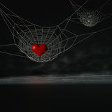 Spider heart. Royalty Free Stock Photography