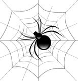 Spider on His Web Stock Images