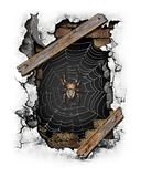 The spider in the hole royalty free illustration