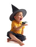 Spider hunting. Isolated image of black spider and small cute boy in witch hat royalty free stock photo