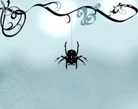 Spider Illustration. Black spider handing from curly vine, web at bottom left, illustration Stock Photos