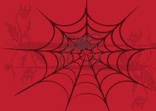 Spider illustration Stock Images