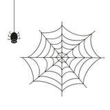 Spider. Illustration on white background. Stock Photos