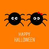 Spider insect family couple. Boy Girl. Happy Halloween card. Flat design Stock Image
