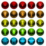 Spider and insect icon set. Set of 25 glossy insect and spider icons Royalty Free Stock Photography