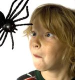 Spider Kid. Wide-eyed kid terrified by toy spider casting his evil shadow Royalty Free Stock Photography