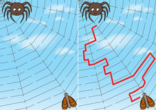 Spider maze. For kids with a solution Stock Photos
