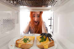 Spider in microwave Royalty Free Stock Photo