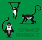 Spider Monkey Cartoon Vector Illustration. Animal Cartoon EPS10 File Format Stock Photography