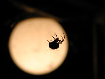 Spider and Moon. [its actually a lamp Stock Photo