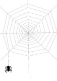 Spider on the net Stock Photos