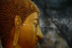 Spider net in front of Buddha Stock Photos