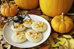 Spider's Halloween Snack Royalty Free Stock Photo