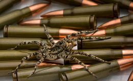 Spider safeguard weapon Royalty Free Stock Photos