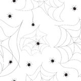 Spider seamless background Stock Images