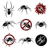 Spider set. Vector Royalty Free Stock Photography
