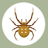 Spider silhouette arachnid fear graphic flat scary animal poisonous design nature phobia insect danger horror tarantula. Halloween vector icon. Creepy warning royalty free illustration