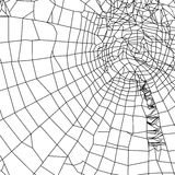 Spider and spider web Stock Photography