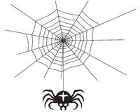 Spider and spider web. A silhouette black-and-white image of a spider hanging on a web Royalty Free Stock Image