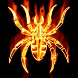 Spider surrounded by fire Stock Photography