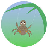 Spider swinging on the spiderweb Royalty Free Stock Photography