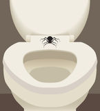 Spider On Toilet Seat. Large scary spider resting on toilet seat Stock Photo