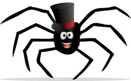 Spider with a tophat Stock Photo