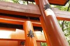 Spider in the torii Royalty Free Stock Image
