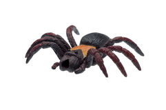 Spider toy. In plastic material royalty free stock photos