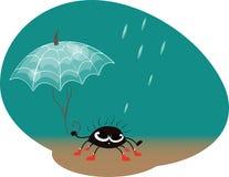 Spider with umbrella Stock Photos