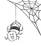 Spider_vector Stock Photos