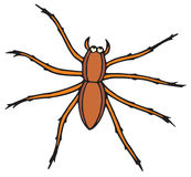 Spider (vector clip-art). Vector clip-art / children's illustration for your design Stock Photos