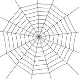 Spider web. Illustration with spider web isolated on white background Royalty Free Stock Photography