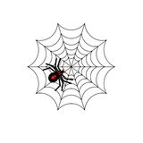 Spider and web. Black and red spider on web Royalty Free Stock Photos
